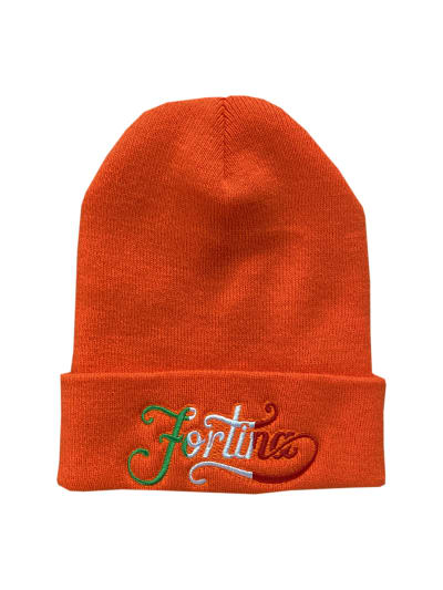 Fortina Beanie: Front