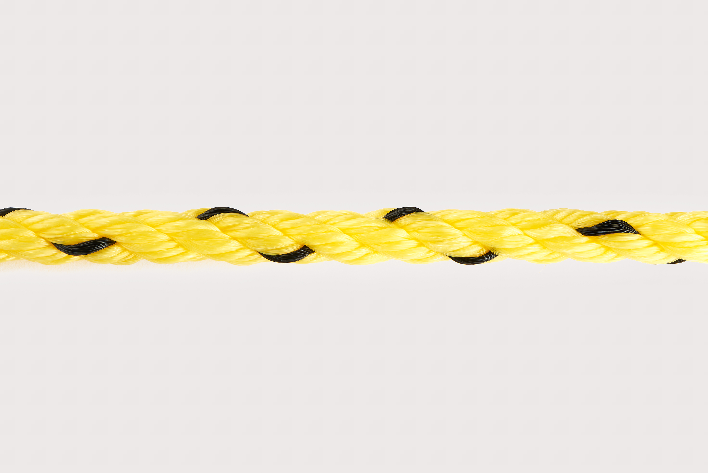 Orion-Cordage-3-Strand Monofilament Polypropylene-Yellow I Black-Curved238.jpg