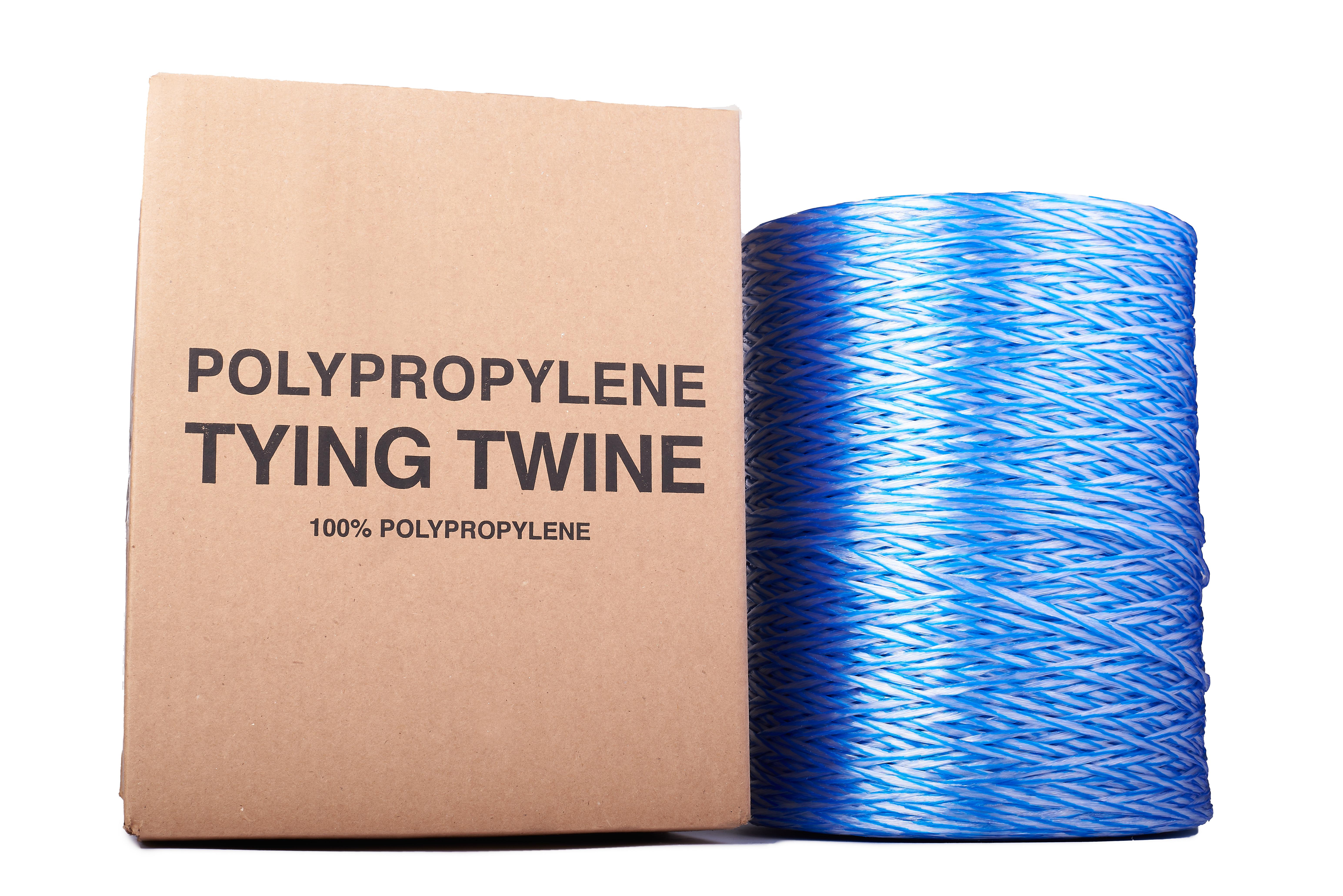 Orion-Cordage-Radiant Film Tying Twine-Blue-Straight276.jpg