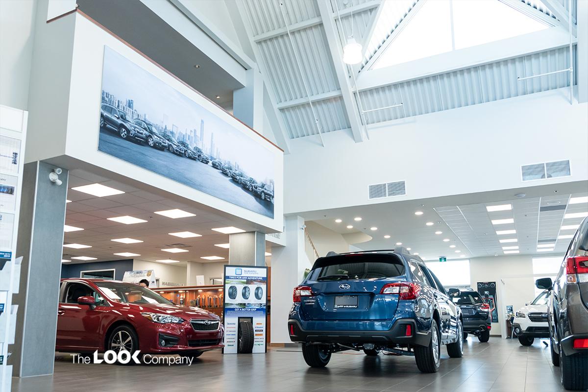 How Visual Displays Help Car Dealerships Enhance the Buyer Experience