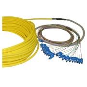 12-fibre AXAI, 9/OS2, SC/PC-SC/PC