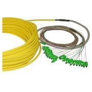 12-fibre AXAI, 9/OS2, LC/APC-LC/APC