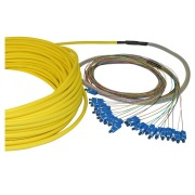 12-fibre AXAI, 9/OS2, LC/PC-LC/PC