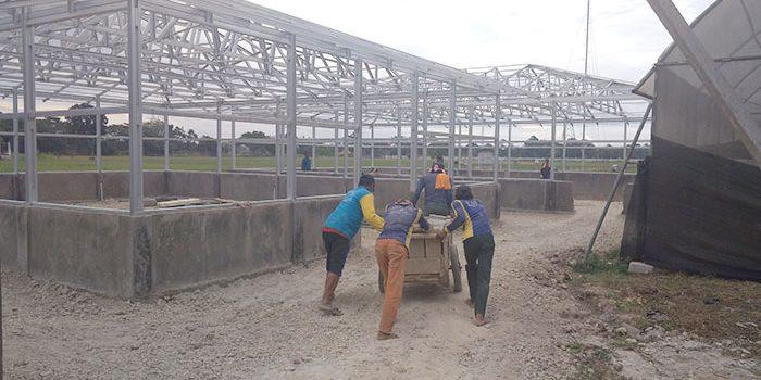 Proyek Pengadaan Sarana Pendukung Produksi Benih Perkebunan Dan Holtikultura Di Kerjakan Sesuai Target