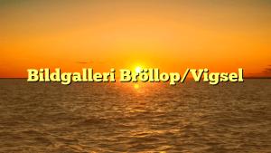 Bildgalleri Bröllop/Vigsel