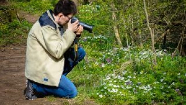 Lär dig fotografera bättre