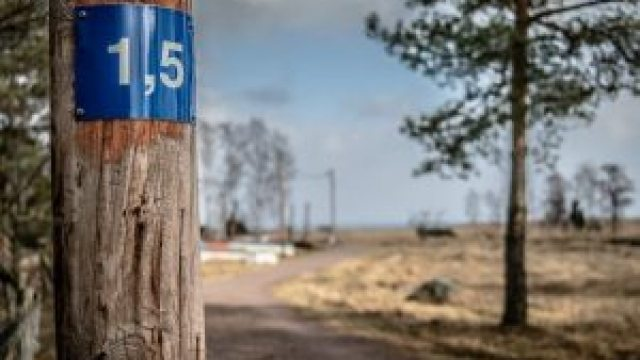 Fotoutbildningar Kalmar och distans