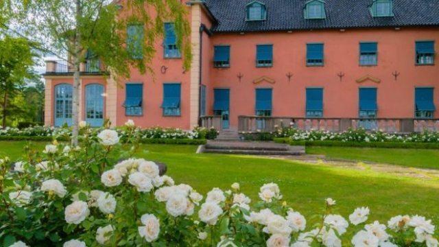 Fotouppdrag rosträdgård