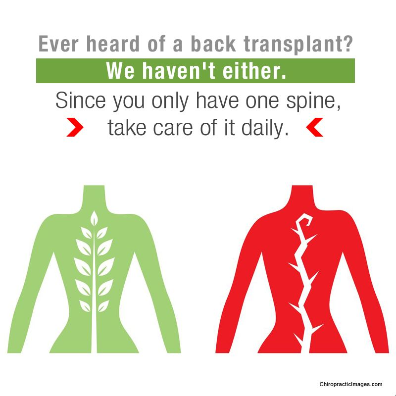 back pain chiropractor seattle