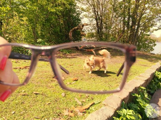 Lensbest-LensbestShop-LensbestBlog:/blog/LensbestBlog/20150527-janinasstylingtipps-editorpicks/2015_05_04_Janinas_Styling_Tipp_Summerpics_Bild 4.jpg
