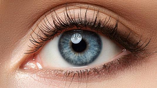 Lensbest-LensbestShop-LensbestBlog:https://res.cloudinary.com/fourcare/image/fetch/q_90/f_auto/fl_force_strip/https://www.lensbest.de/blog/LensbestBlog/20170915-harte-vs-weiche-linsen/bild-harte-weiche-linsen-weisse-Augen535x100px.jpg