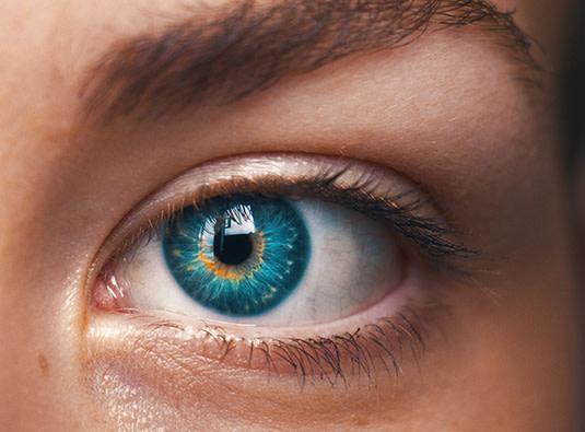 Das menschliche Auge ist empfindlich.