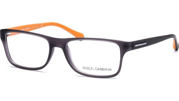 Over Moulded Rub DG5009 2813  5416 Grey Demi Transparent Rubber von DOLCE&GABBANA