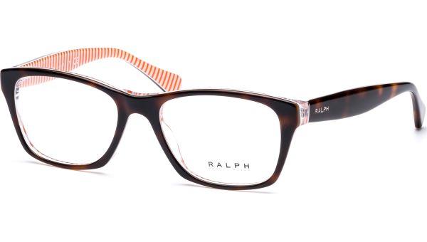 RA7046 1005 4917 Havana/White/Orange von Ralph - Ralph Lauren