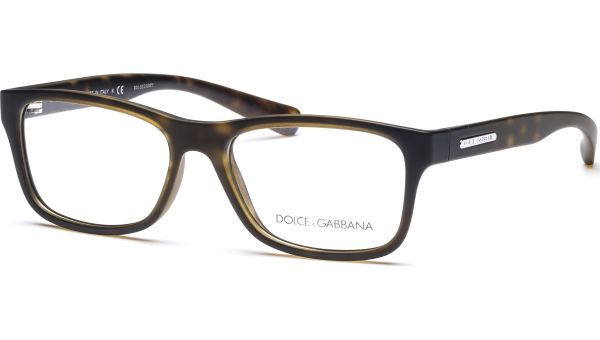 Young & Coloured DG5005 2899 5416 Crystal/Havana Rubber von DOLCE&GABBANA