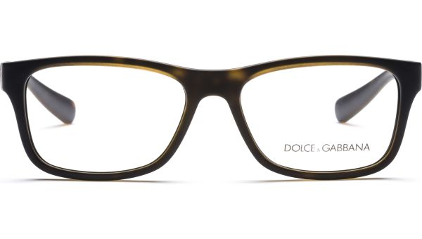 Young & Coloured DG5005 2899 5416 Crystal/Havana Rubber von DOLCE&GABBANA