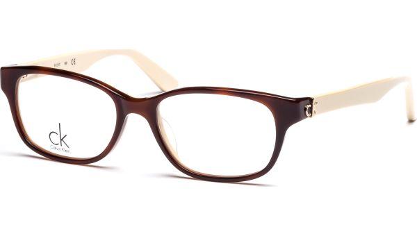 ck5733 512 5117 Havana/Ivory von ck Calvin Klein