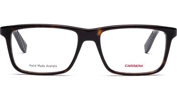 CA8801 TRD 5517 DKHAVAN BLCK von Carrera