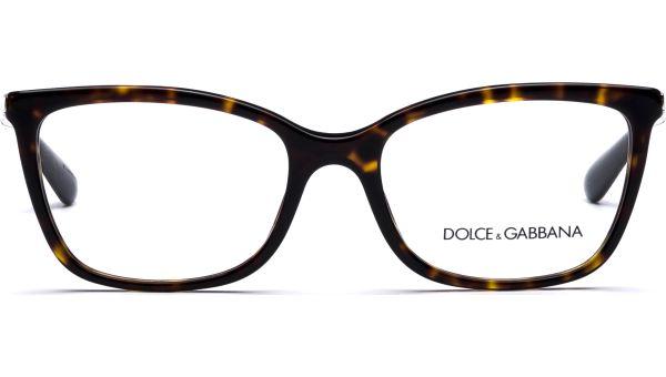 DG3243 502 5217 Havana von DOLCE&GABBANA