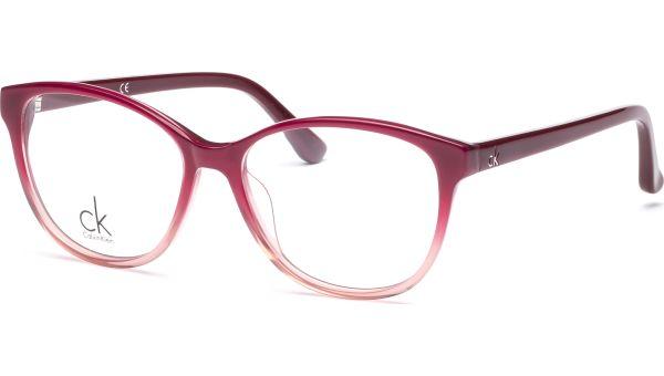 ck5824 514 5215 Purple Gradient von ck Calvin Klein