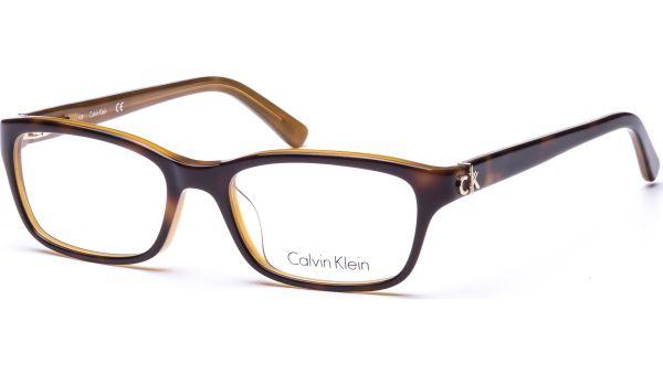 ck5691 219 5017 HAVANA AMBER von ck Calvin Klein