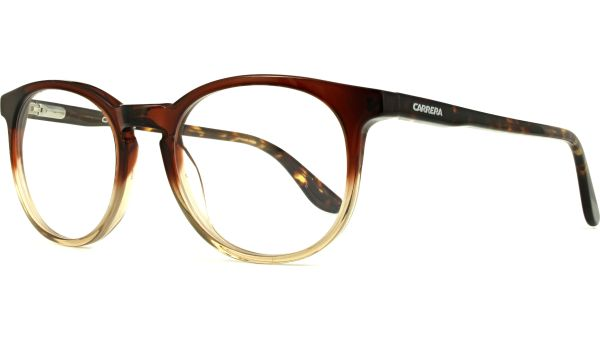 CA6636/N TKI 4919 Brown Havana von Carrera
