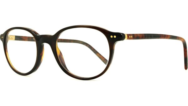 PH2047 5035 4820 Tortoise von Polo - Ralph Lauren