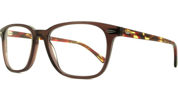 RB7119 8023 5317 Opal Brown von Ray-Ban