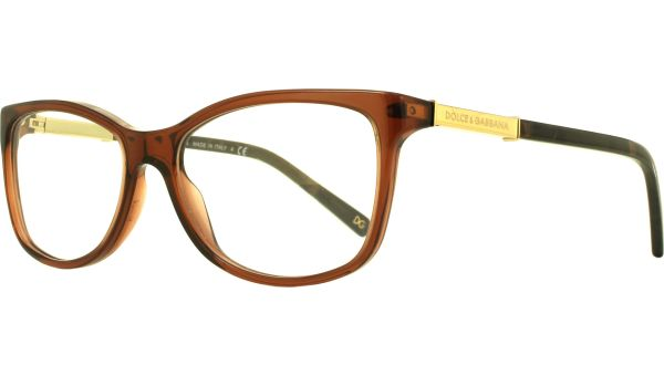 Logo Plaque DG3107 2542 5215 Transparent Brown von DOLCE&GABBANA