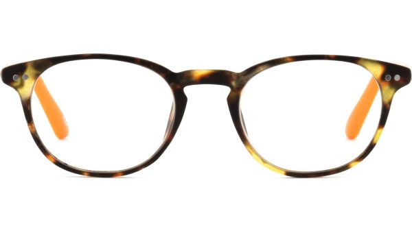 Lesebrille DOKTOR 4719 Havanna-Orange von I Need You