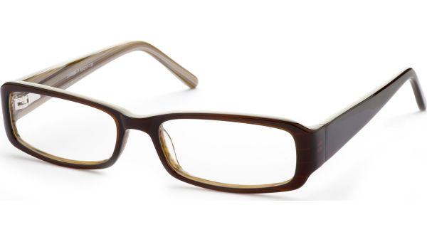 Shoga 5317 dunkelbraun von Lennox Eyewear
