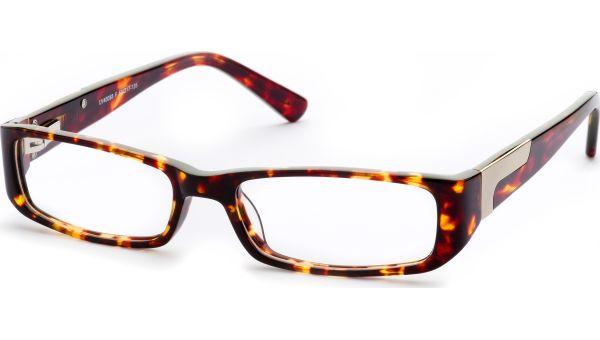 Shajor 5317 demi/braun von Lennox Eyewear