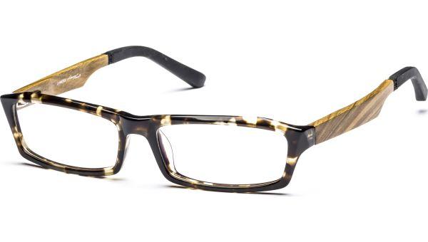 Parci 5516 demi/braun von Lennox Eyewear