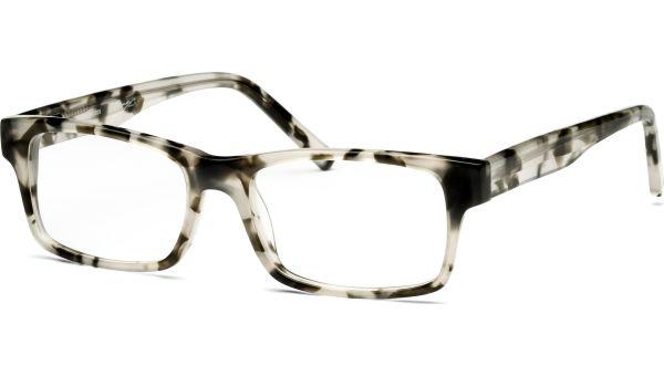 Arjun 5217 demi/grau von Lennox Eyewear