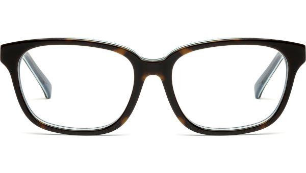 Jurian 5216 demi-braun/blau von Lennox Eyewear