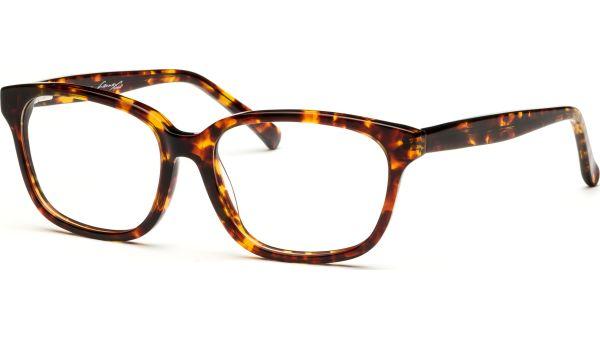 Jurian 5216 demi/braun von Lennox Eyewear