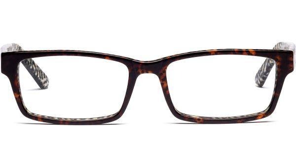 Thaikuri 5517 demi/braun von Lennox Eyewear