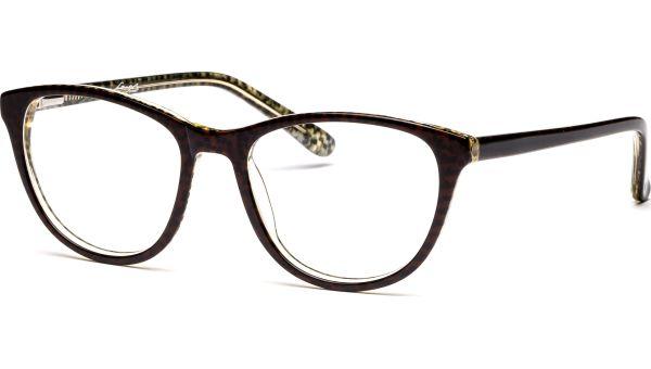 Allora 4917 braun/schwarz von Lennox Eyewear