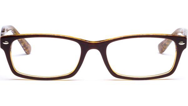Hilja 5418 braun/bernstein-transparent von Lennox Eyewear