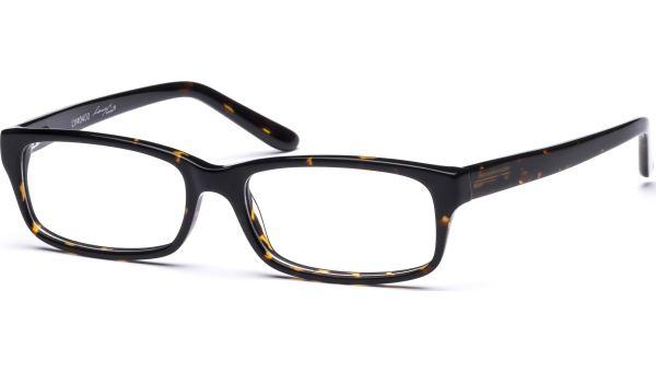 Akona 5216 demi-braun von Lennox Eyewear
