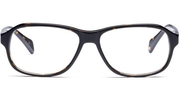 Fjalar 5515 demi-braun von Lennox Eyewear