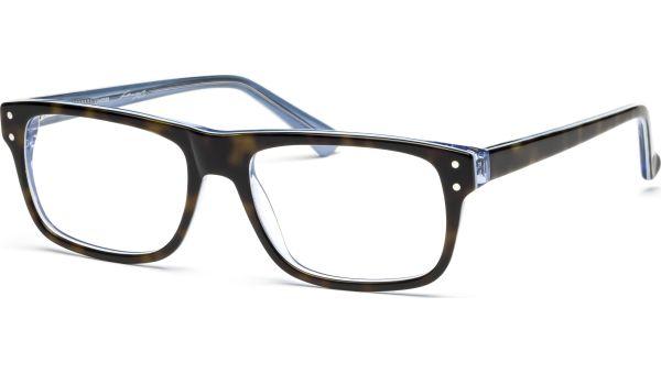 Kadee 5317 demi-braun/hellblau von Lennox Eyewear