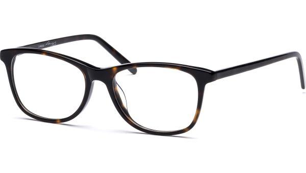 Nea 4916 demi-braun von Lennox Eyewear