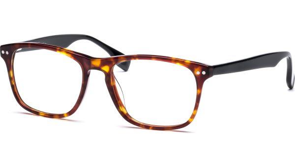 Hannu 5217 demi-braun/schwarz von Lennox Eyewear