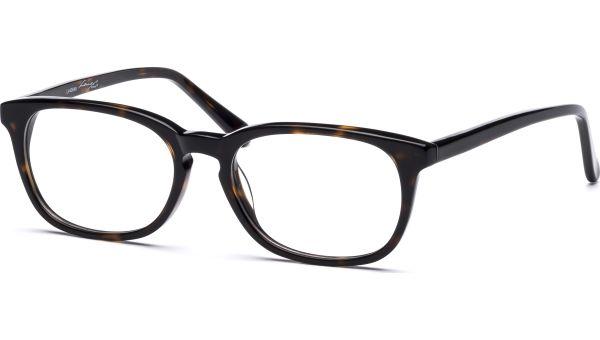 Joni 5117 demi-braun von Lennox Eyewear