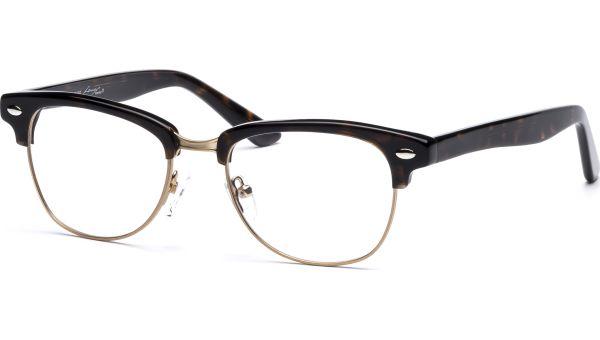 Juke 4817 demi-braun/gold von Lennox Eyewear
