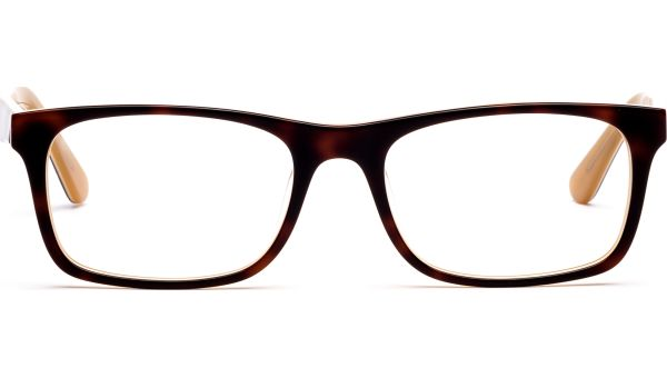 Enner 5221 demi-braun von Lennox Eyewear