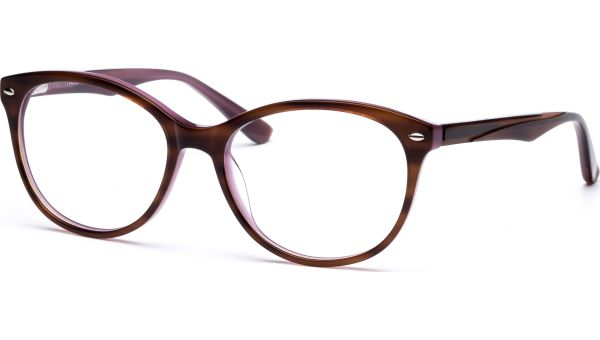 Caja 5116 brown/purple/light brown von Lennox Eyewear