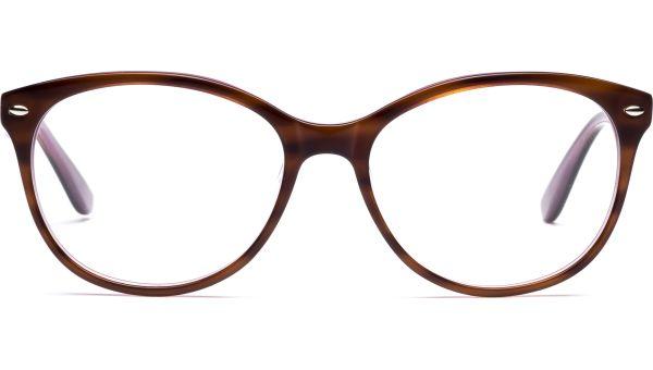 Caja 5116 brown/purple/light brown von Lennox Eyewear