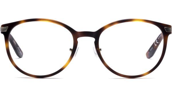 Jalo 5018 matt demi braun/matt antique light gold von Lennox Eyewear